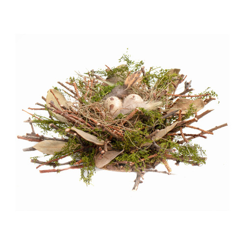 Moss and Twig Natural Spring Bird Nest Decoration 27cm
