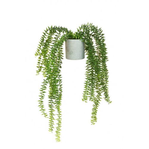 Artificial Succulent Trailing Fern