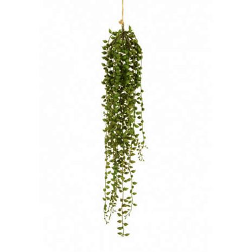 Trailing Senecio String of Pearls Artificial Succulent