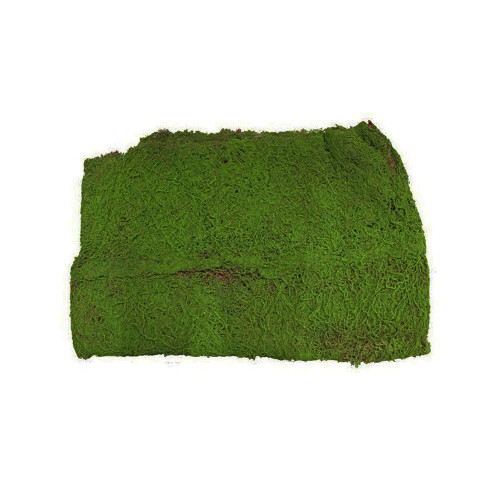 Large Green Moss Sheet Artificial 1m x 2m