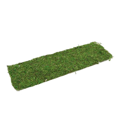 Dried Asia Moss Sheet Plastic Backing 120cm x 36cm