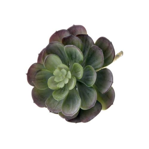 Echeveria Type Artificial Succulent Green