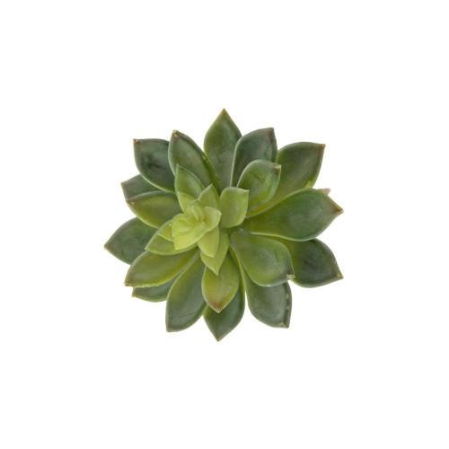 Stonecrop or Sedum Artificial Succulent