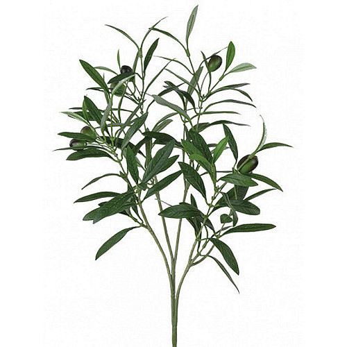 Olive Fruit And Leaf Spray Artificial