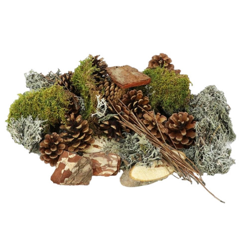 Natural Forest Moss Cones Wood Bark Craft Mix 400g