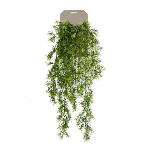Sprengeri Asparagus Hanging Bush Artificial