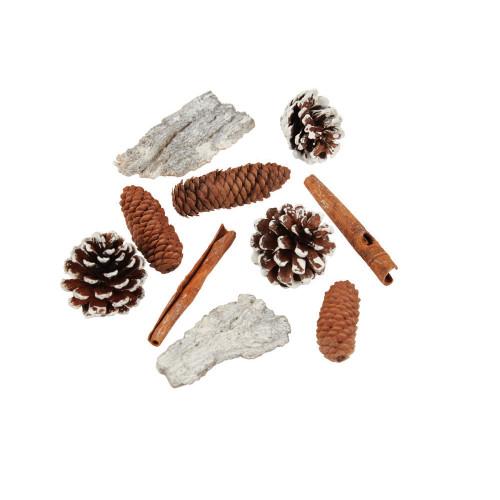 Natural Woodland Seasonal Craft Mixed Bag