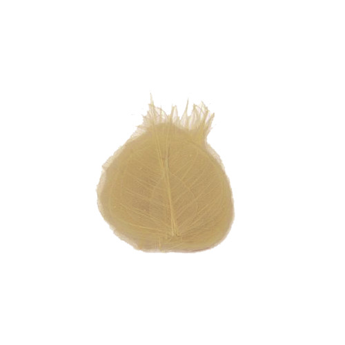 Pack of 30 Natural Beige Skeleton Leaves 9cm/3.5 Inches