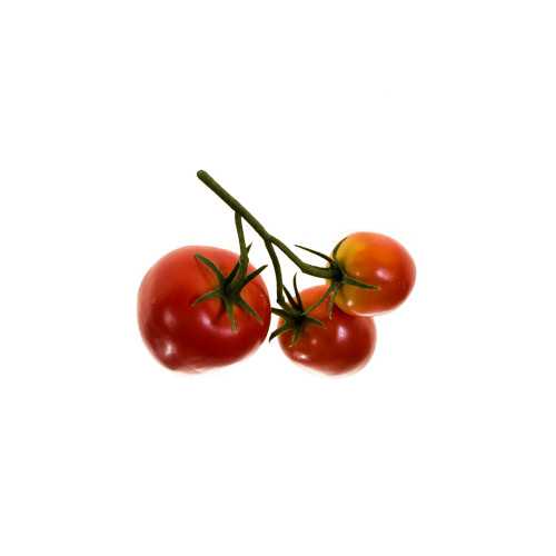 Artificial Tomato Fruit On Vine Bundle Of 3