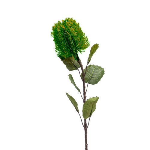 Banksia Artificial Single Flower Stem 57cm Green