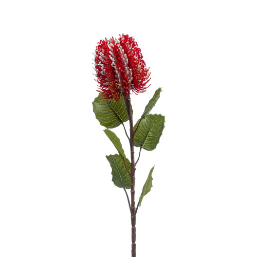 Banksia Artificial Single Flower Stem 57cm Red