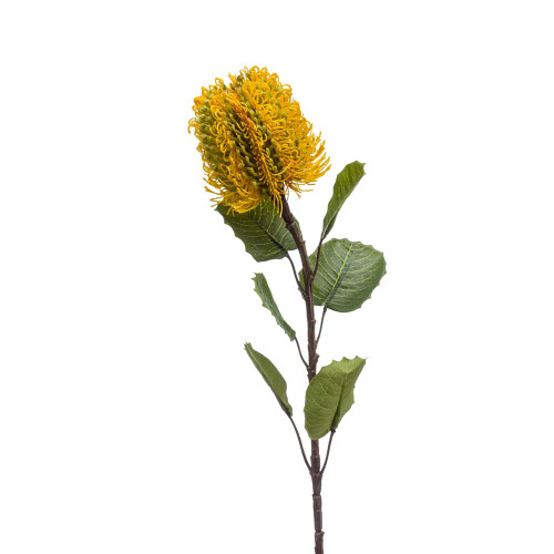 Banksia Artificial Single Flower Stem 57cm Yellow