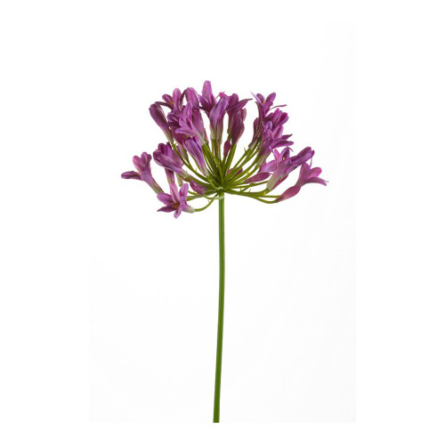 Agapanthus Artificial Single Flower Stem 75cm Light Purple