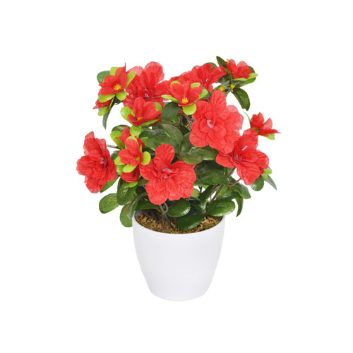 Artificial Mini Azalea in White Pot Red