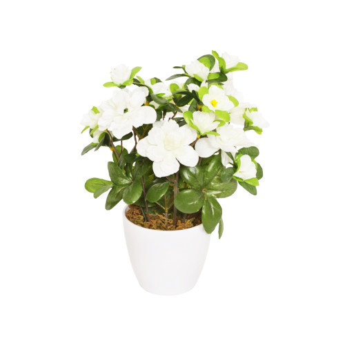 Artificial Mini Azalea in White Pot White