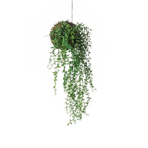 Artificial Trailing Senecio Succulent String Garden