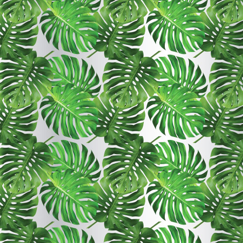 Frosted Cello Roll 80cm x 50m Green Cheese Plant Leaf Motif