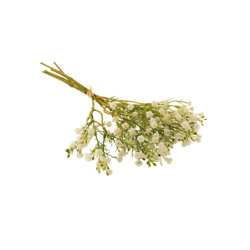 Gypsophila Flamingo or Baby's Breath White