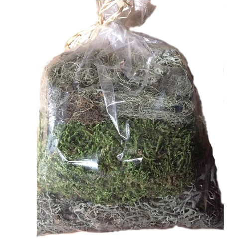 Natural Dried And Preserved Craft Moss Mixed Bag 75g