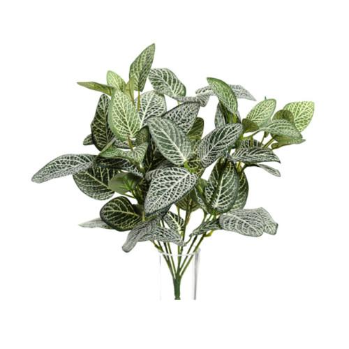 Artificial Green Fittonia Bush