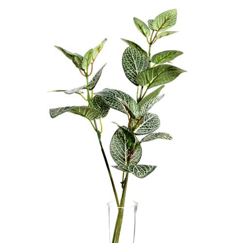 Artificial Green Fittonia Spray