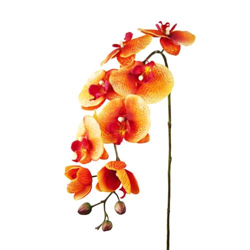 Orange Artificial Silk Phalaenopsis Orchid