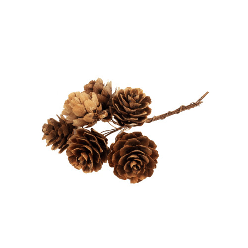 Pack of 36 Natural Mini Pine Cones on Wires