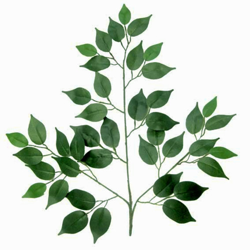 Ficus Artificial Branches 50cm x Pack of 12