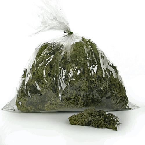 Moss Reindeer Dark Green 450g bag