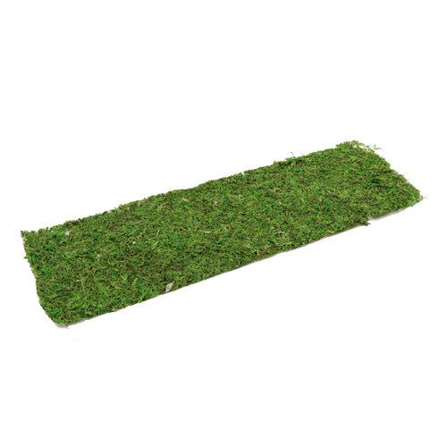 Natural Green Preserved Moss Sheet Rectangle 56 x 18cm