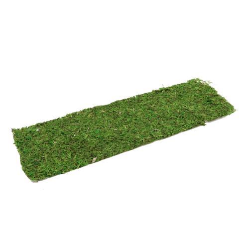 Natural Green Moss Sheet Rectangle 56 x 18cm
