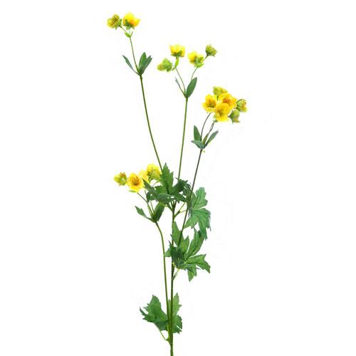 Buttercup Spray Yellow x3 Stems 80cm