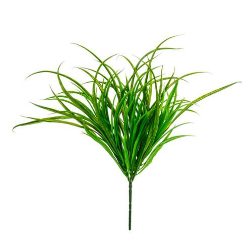 Beargrass Bush 40cm