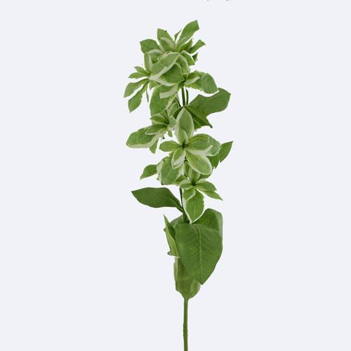 Euphorbia Spray Artificial 67cm Green