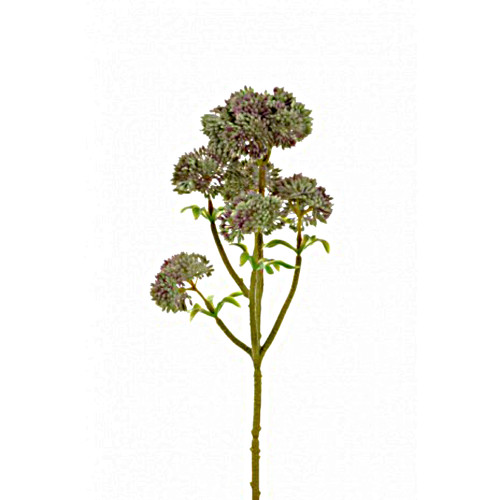 Angelica Artificial Succulent 33cm Green Pink