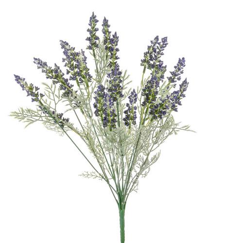 Lavender Bush Purple 45cm