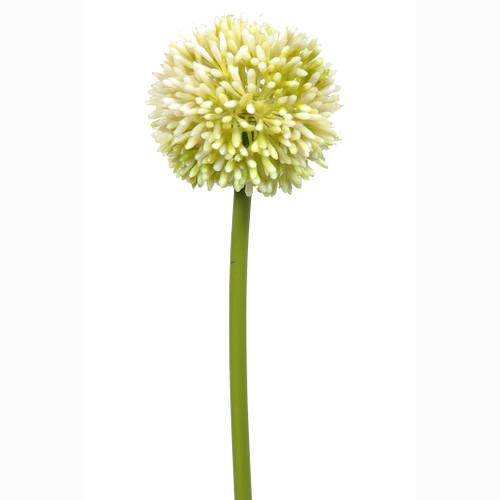 Allium Artificial Single Flower Stem Cream 55cm