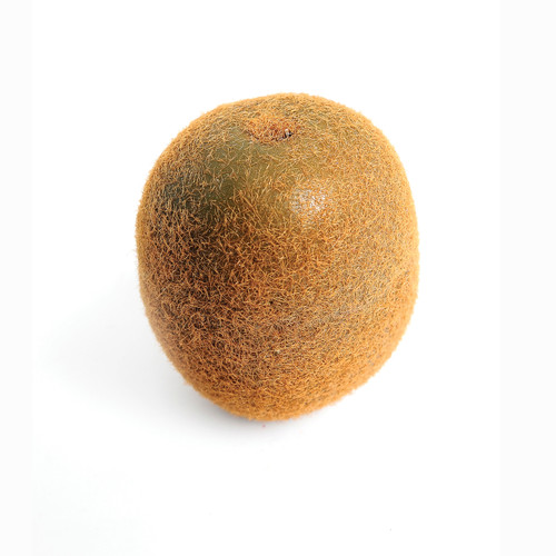 Kiwi Fruit Very Realistic 6cm/2.5 inch Diameter