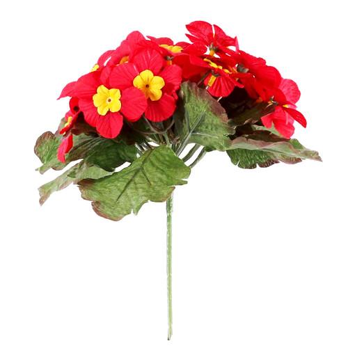Primula Bush 25 Flowers 21cm/8 Inches Red