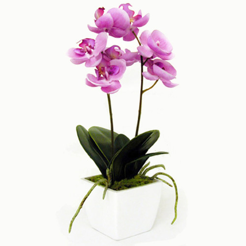 Orchid in Pot Lilac Pink 33cm