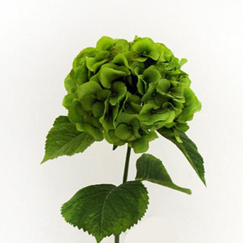 Hydrangea Green 70cm/27.5 Inch Stem