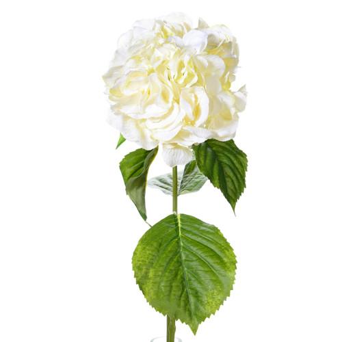 Hydrangea Ivory 70cm/27.5 Inch Stem