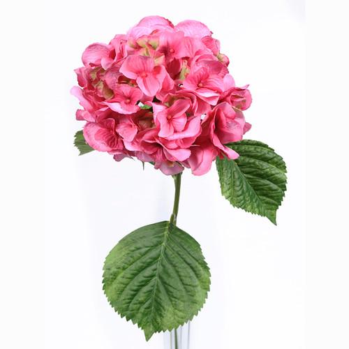 Hydrangea Pink 70cm/27.5 Inch Stem
