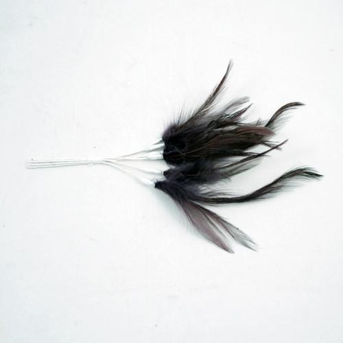 Narrow Feather x 6 Aubergine Purple