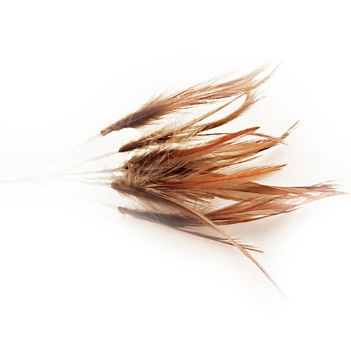 Narrow Feather x 6 Brown