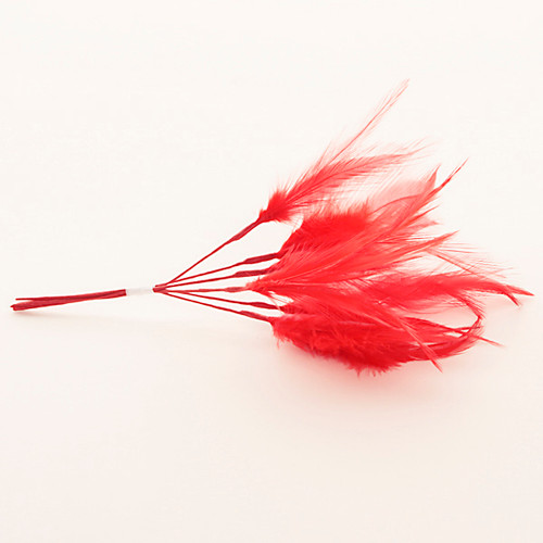 Narrow Feather x 6 Red