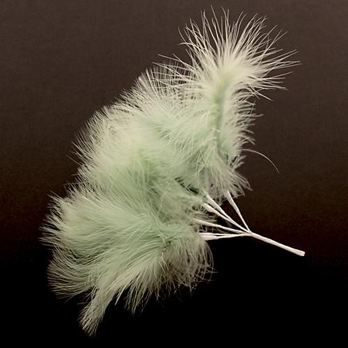 Fluff Feather x 6 Sage