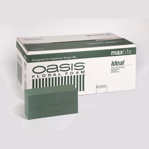 Oasis® Ideal Maxlife Brick box of 20
