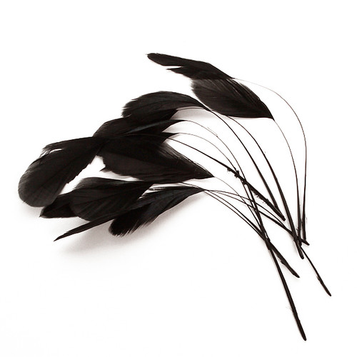 Diamond Feathers x 12 Black