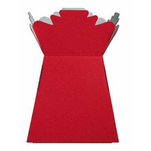 Living Vase Flower Bouquet Delivery Boxes - Red